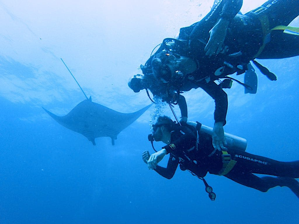 Discovery dive with Manta Ray Nusa Penida Island Bali