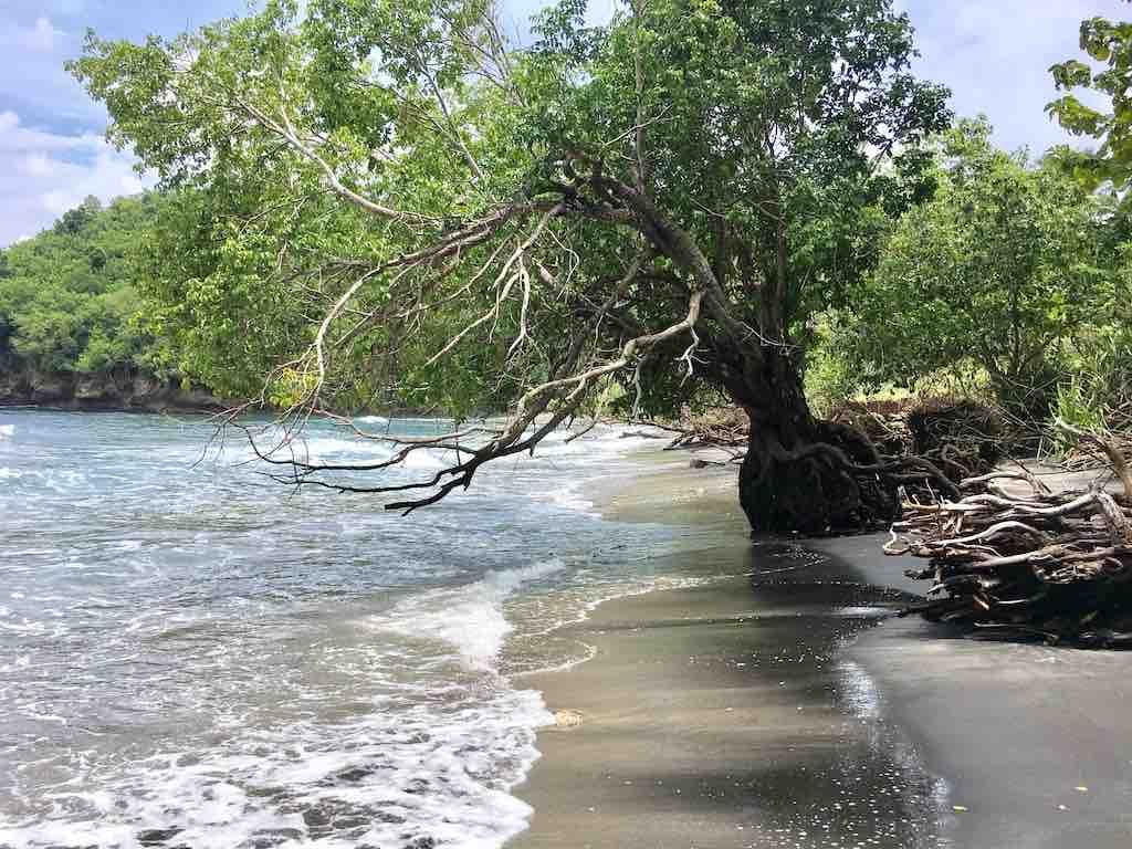 Gamat Bay Nusa Penida Bali Beach