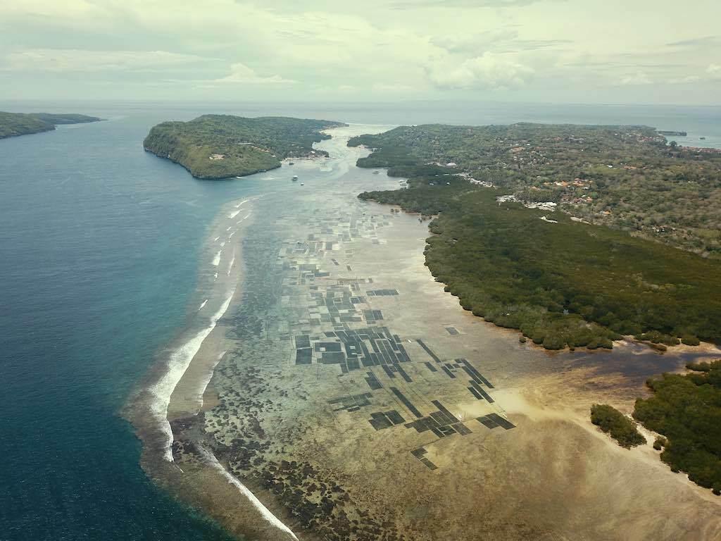 Nusa Ceningan Nusa Lembongan Budidaya rumput laut Bali
